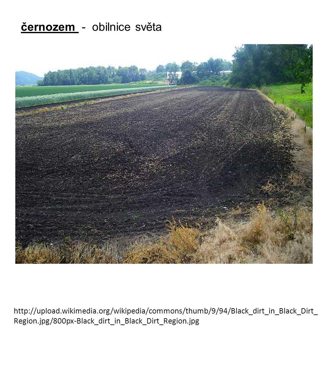 http://www.voderek.cz/prirodopis/ekoprirodopis9/p913/p913_soubory/image002.gif hnědozem horizont A1 - humusový A2 - vyluhovaný B - obohacený C - matečná hornina