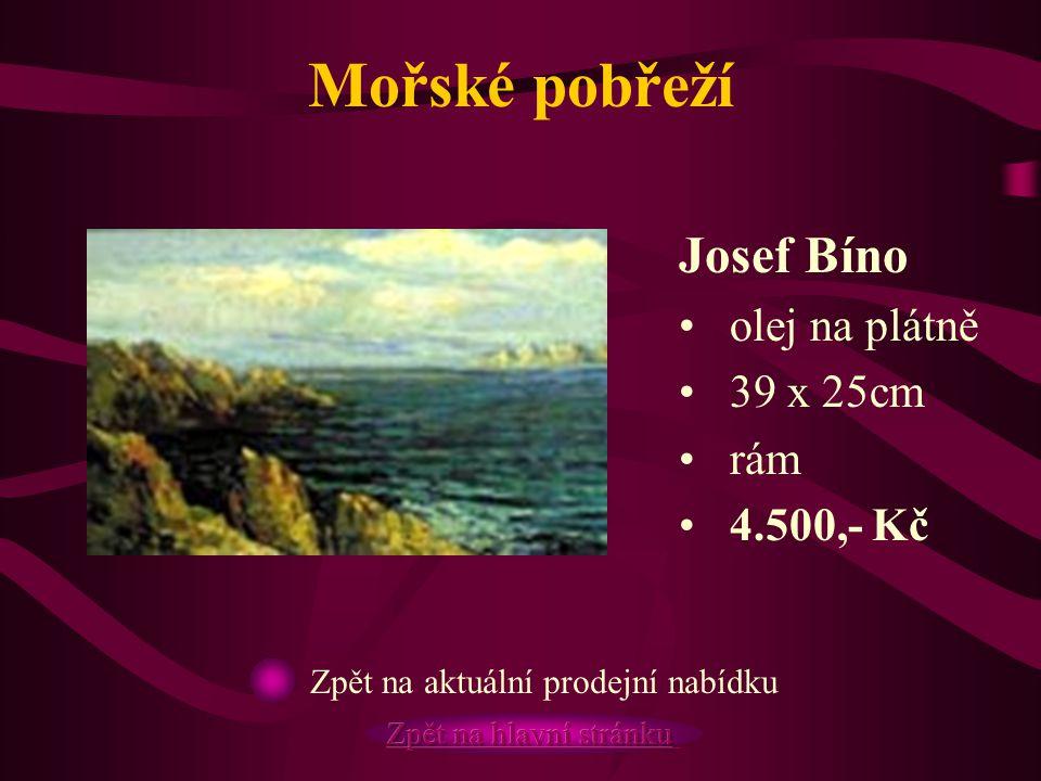 Mořské pobřeží Josef Bíno olej na plátně 39 x 25cm rám 4.500,- Kč Zpět na aktuální prodejní nabídku