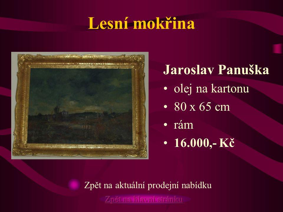 Lesní mokřina Jaroslav Panuška olej na kartonu 80 x 65 cm rám 16.000,- Kč Zpět na aktuální prodejní nabídku