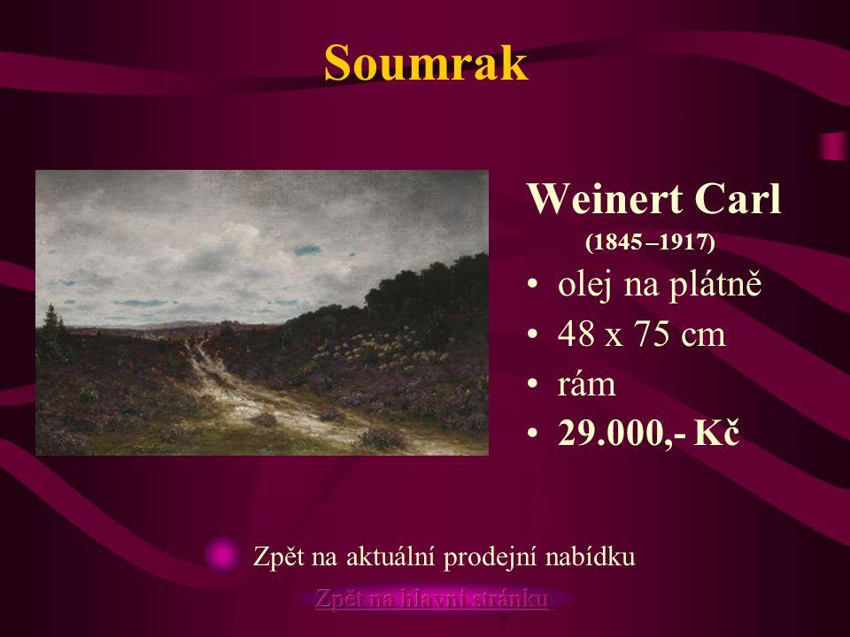 Soumrak Weinert Carl (1845 –1917) olej na plátně 48 x 75 cm rám 29.000,- Kč Zpět na aktuální prodejní nabídku