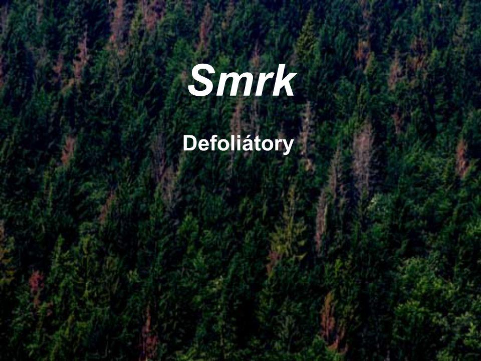 Smrk Defoliátory