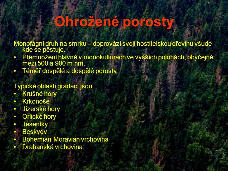 Ohrožené porosty Monofágní druh na smrku – doprovází svoji hostitelskou dřevinu všude kde se pěstuje. Přemnožení hlavně v monokulturách ve vyšších pol