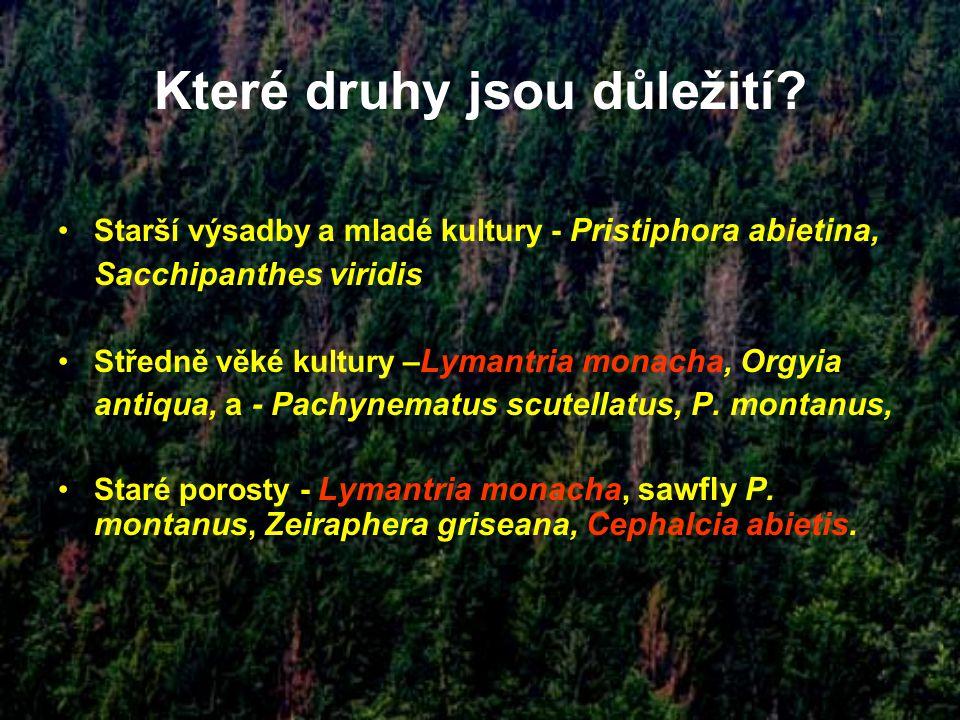 Které druhy jsou důležití? Starší výsadby a mladé kultury - Pristiphora abietina, Sacchipanthes viridis Středně věké kultury – Lymantria monacha, Orgy