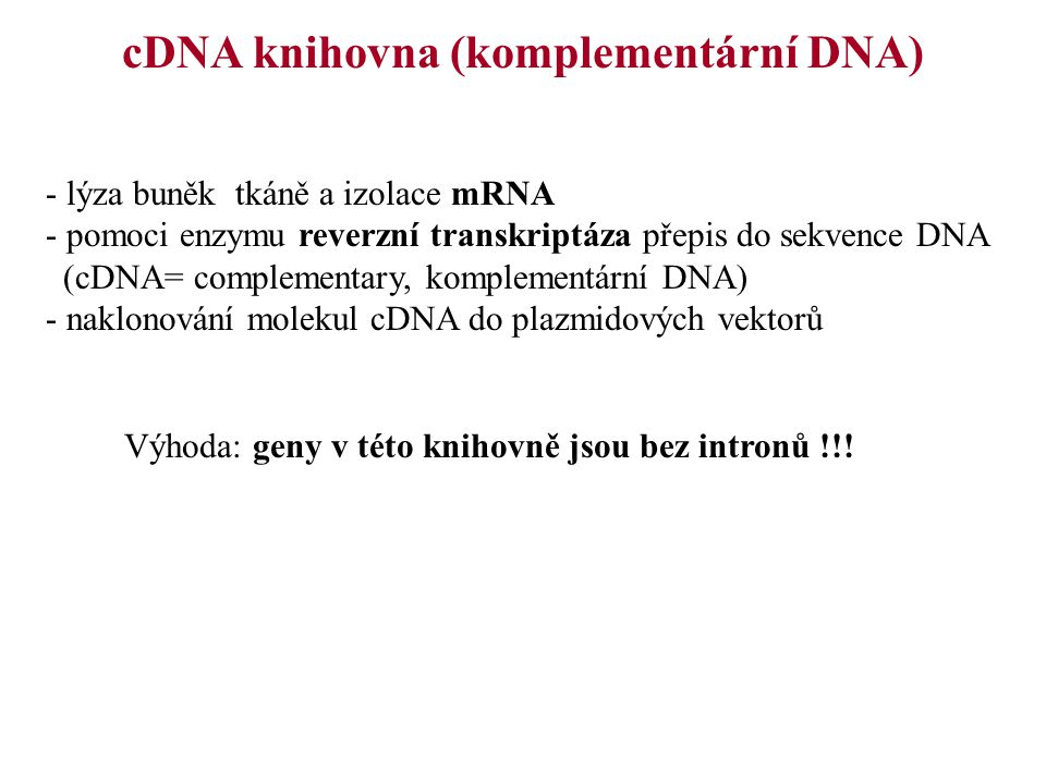 cDNA knihovna (komplementární DNA) - lýza buněk tkáně a izolace mRNA - pomoci enzymu reverzní transkriptáza přepis do sekvence DNA (cDNA= complementar