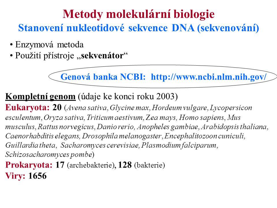 """Metody molekulární biologie Stanovení nukleotidové sekvence DNA (sekvenování) Enzymová metoda Použití přístroje """"sekvenátor"""" Kompletní genom (údaje ke"""