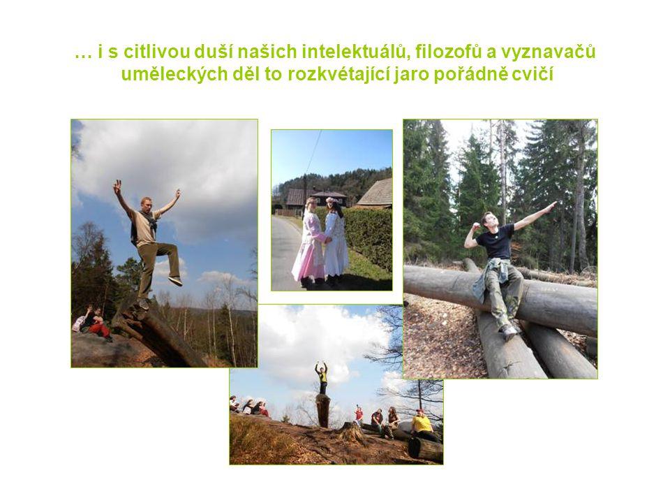 O vysluněném víkendu se nás na skanzenu v Srbské Kamenici sešlo 22 malošů i velkošů a pes Beník.