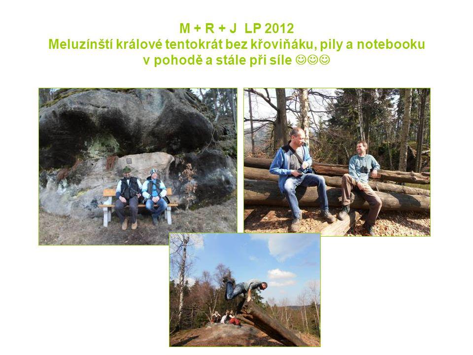 M + R + J LP 2012 Meluzínští králové tentokrát bez křoviňáku, pily a notebooku v pohodě a stále při síle