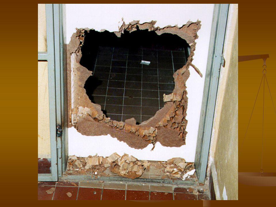 Dveře a okna jsou nejzranitelnějšími místy obydlí.