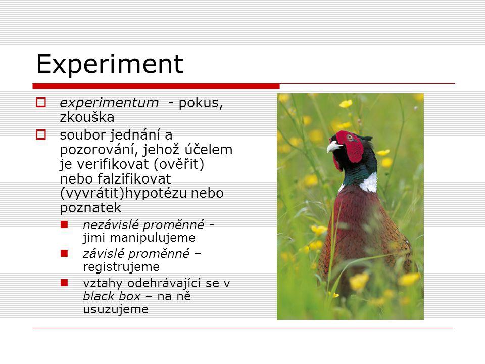 Experiment  experimentum - pokus, zkouška  soubor jednání a pozorování, jehož účelem je verifikovat (ověřit) nebo falzifikovat (vyvrátit)hypotézu nebo poznatek nezávislé proměnné - jimi manipulujeme závislé proměnné – registrujeme vztahy odehrávající se v black box – na ně usuzujeme