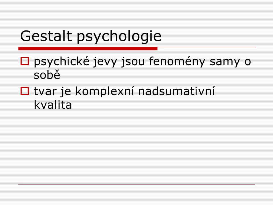 Gestalt psychologie  psychické jevy jsou fenomény samy o sobě  tvar je komplexní nadsumativní kvalita