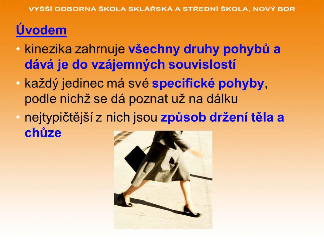 POUŽITÉ ZDROJE: www.glassschool.cz VYBÍRAL, Zdeněk.