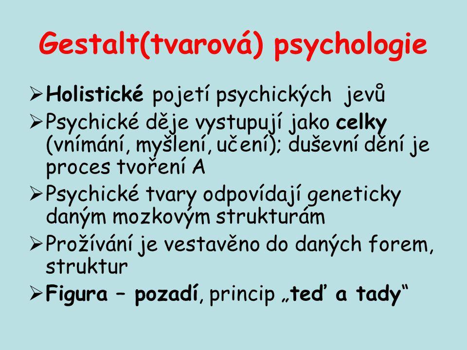 Gestalt(tvarová) psychologie  Holistické pojetí psychických jevů  Psychické děje vystupují jako celky (vnímání, myšlení, učení); duševní dění je pro