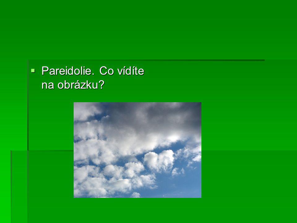  Pareidolie. Co vídíte na obrázku