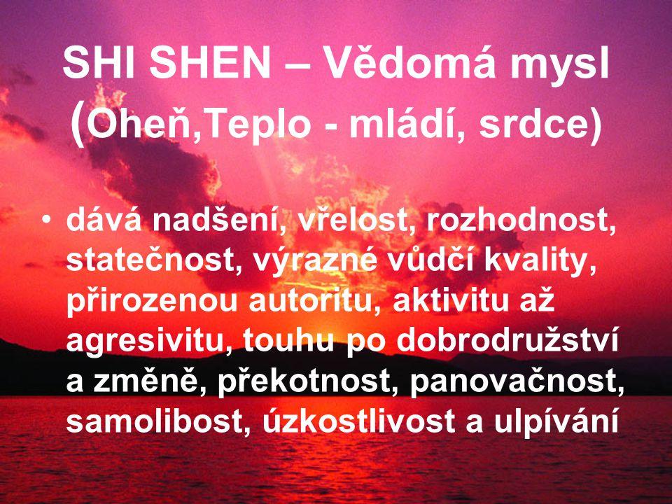 SHI SHEN – Vědomá mysl ( Oheň,Teplo - mládí, srdce) dává nadšení, vřelost, rozhodnost, statečnost, výrazné vůdčí kvality, přirozenou autoritu, aktivitu až agresivitu, touhu po dobrodružství a změně, překotnost, panovačnost, samolibost, úzkostlivost a ulpívání