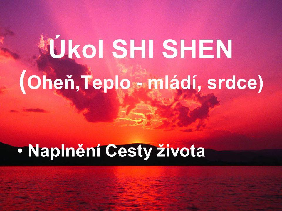 Úkol SHI SHEN ( Oheň,Teplo - mládí, srdce) Naplnění Cesty života