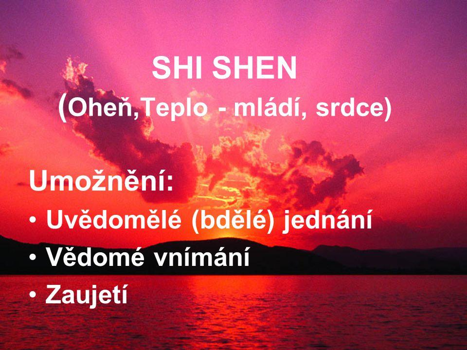 SHI SHEN ( Oheň,Teplo - mládí, srdce) Umožnění: Uvědomělé (bdělé) jednání Vědomé vnímání Zaujetí