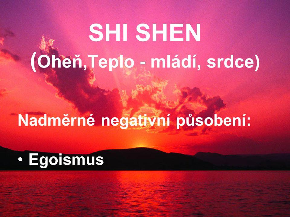 SHI SHEN ( Oheň,Teplo - mládí, srdce) Nadměrné negativní působení: Egoismus