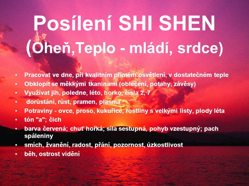 Posílení SHI SHEN ( Oheň,Teplo - mládí, srdce) Pracovat ve dne, při kvalitním přímém osvětlení, v dostatečném teple Obklopit se měkkými tkaninami (oblečení, potahy, závěsy) Využívat jih, poledne, léto, horko, čísla 2, 7 dorůstání, růst, pramen, plasma Potraviny - ovce, proso, kukuřice, rostliny s velkými listy, plody léta tón a ; čich barva červená; chuť hořká; síla sestupná, pohyb vzestupný; pach spáleniny smích, žvanění, radost, přání, pozornost, úzkostlivost běh, ostrost vidění