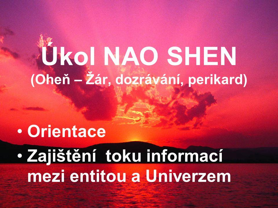 Úkol NAO SHEN (Oheň – Žár, dozrávání, perikard) Orientace Zajištění toku informací mezi entitou a Univerzem