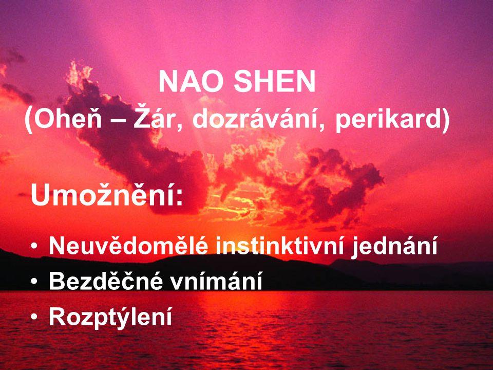 NAO SHEN ( Oheň – Žár, dozrávání, perikard) Umožnění: Neuvědomělé instinktivní jednání Bezděčné vnímání Rozptýlení