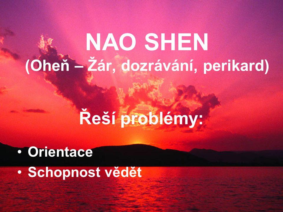 NAO SHEN (Oheň – Žár, dozrávání, perikard) Řeší problémy: Orientace Schopnost vědět