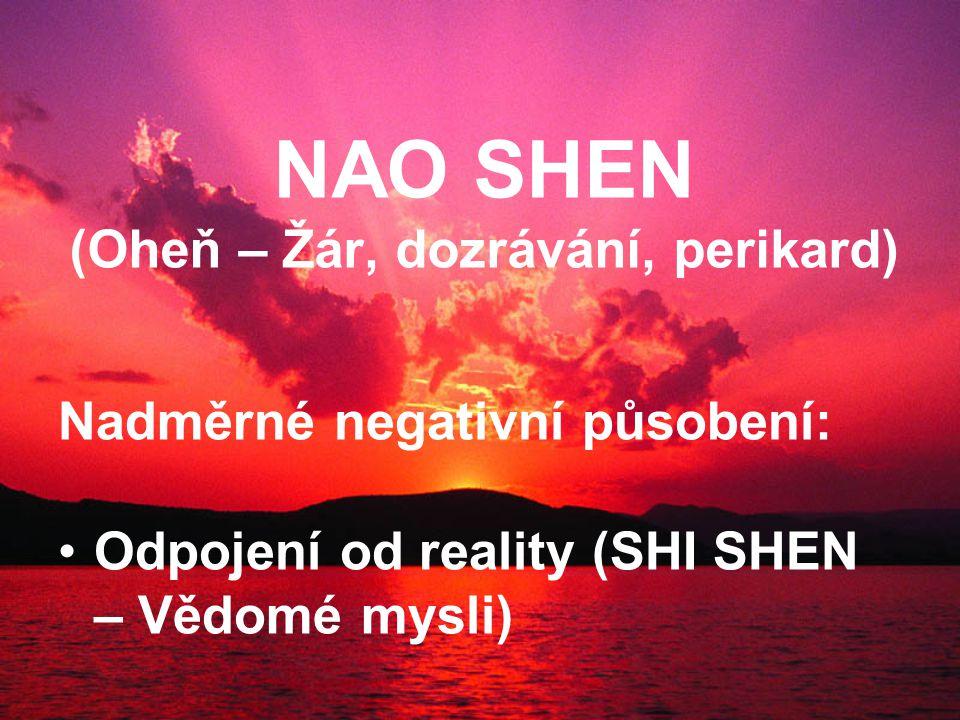 NAO SHEN (Oheň – Žár, dozrávání, perikard) Nadměrné negativní působení: Odpojení od reality (SHI SHEN – Vědomé mysli)