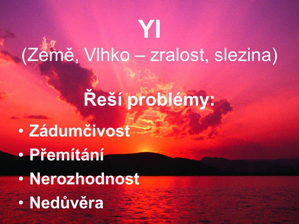 YI (Země, Vlhko – zralost, slezina) Řeší problémy: Zádumčivost Přemítání Nerozhodnost Nedůvěra