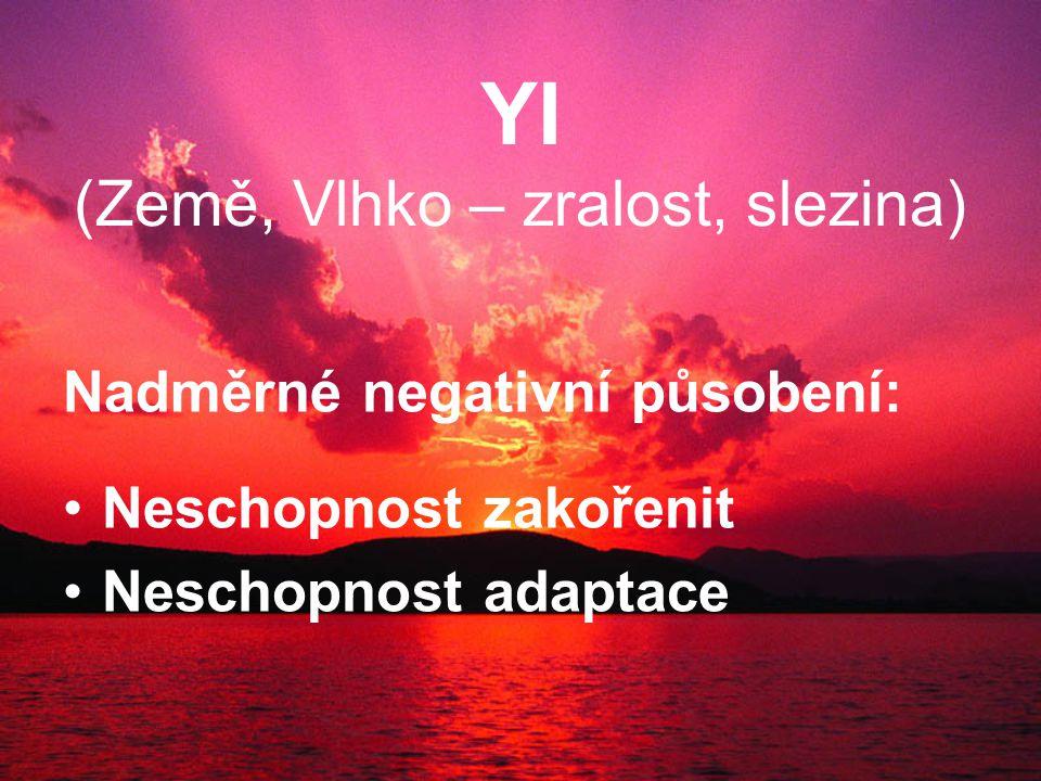 YI (Země, Vlhko – zralost, slezina) Nadměrné negativní působení: Neschopnost zakořenit Neschopnost adaptace