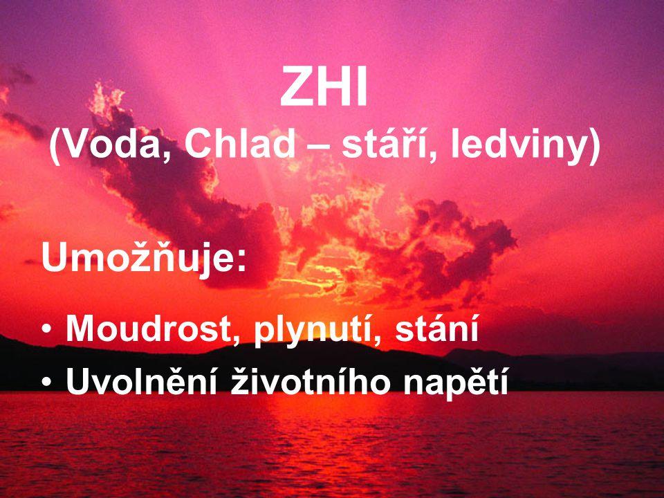 ZHI (Voda, Chlad – stáří, ledviny) Umožňuje: Moudrost, plynutí, stání Uvolnění životního napětí