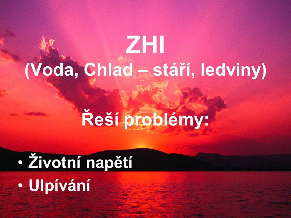 ZHI (Voda, Chlad – stáří, ledviny) Řeší problémy: Životní napětí Ulpívání