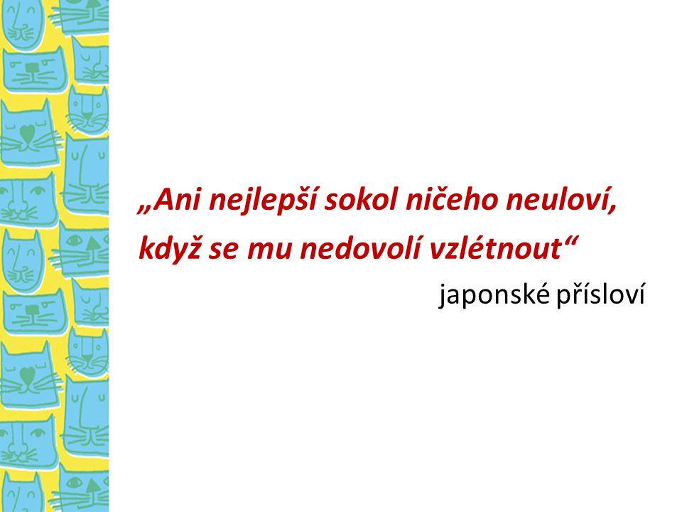 """""""Ani nejlepší sokol ničeho neuloví, když se mu nedovolí vzlétnout"""" japonské přísloví"""