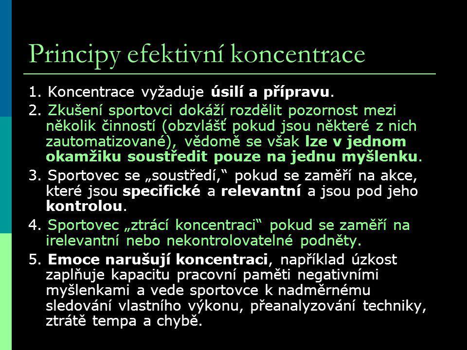Principy efektivní koncentrace 1.Koncentrace vyžaduje úsilí a přípravu.
