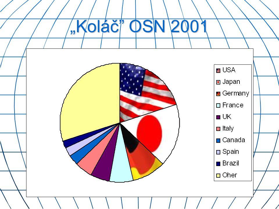 """""""Koláč"""" OSN 2001"""