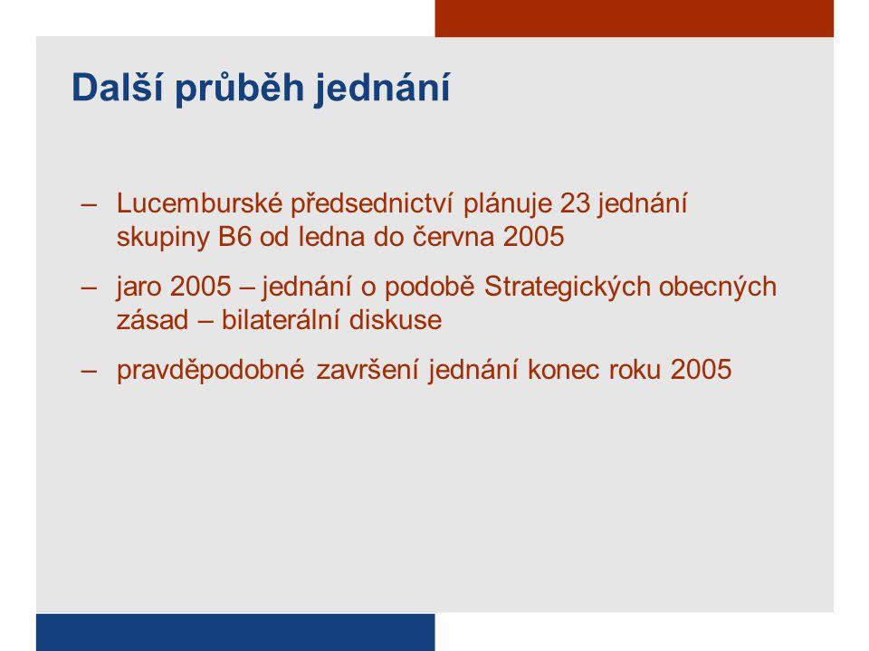Další průběh jednání –Lucemburské předsednictví plánuje 23 jednání skupiny B6 od ledna do června 2005 –jaro 2005 – jednání o podobě Strategických obecných zásad – bilaterální diskuse –pravděpodobné završení jednání konec roku 2005