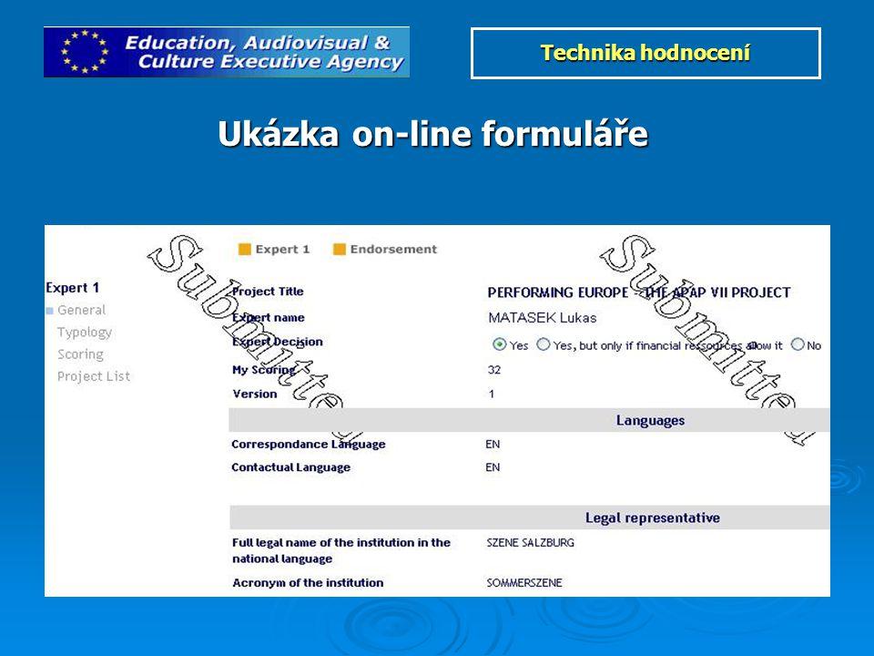Ukázka on-line formuláře Technika hodnocení