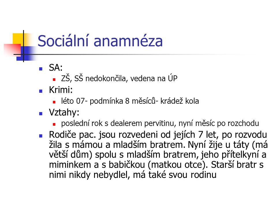 Sociální anamnéza SA: ZŠ, SŠ nedokončila, vedena na ÚP Krimi: léto 07- podmínka 8 měsíců- krádež kola Vztahy: poslední rok s dealerem pervitinu, nyní