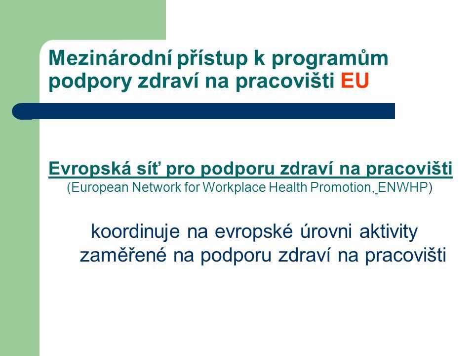 Mezinárodní přístup k programům podpory zdraví na pracovišti EU Evropská síť pro podporu zdraví na pracovišti (European Network for Workplace Health P