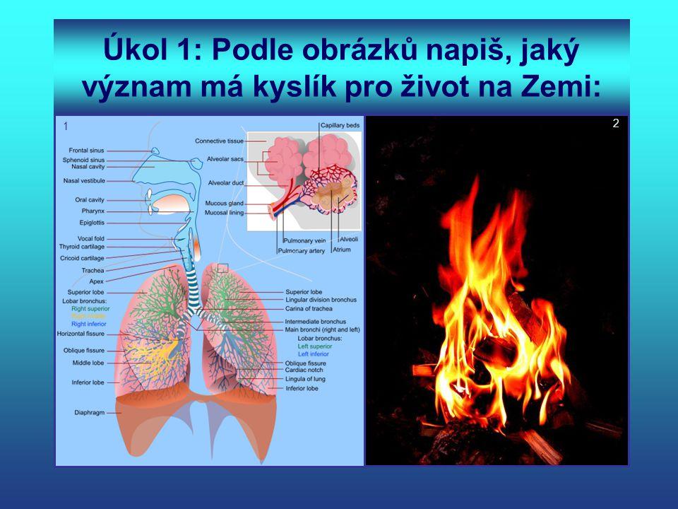 Úkol 1: Podle obrázků napiš, jaký význam má kyslík pro život na Zemi: 2 1