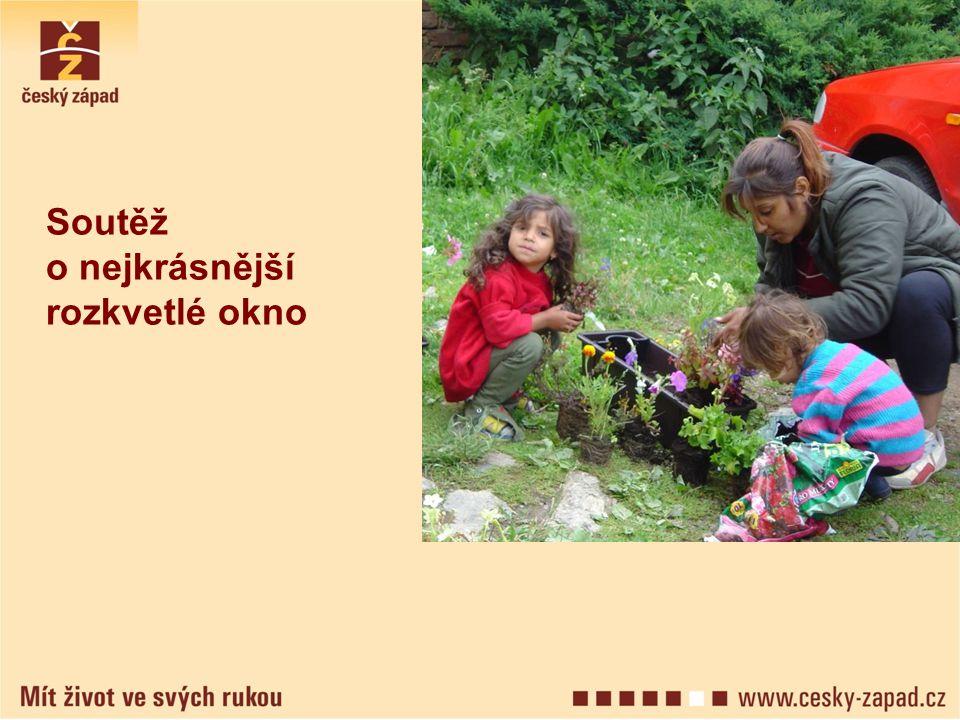 A další akce Výlety Taneční vystoupení Oslava Dne Romů Férová snídaně Taneční festival a další