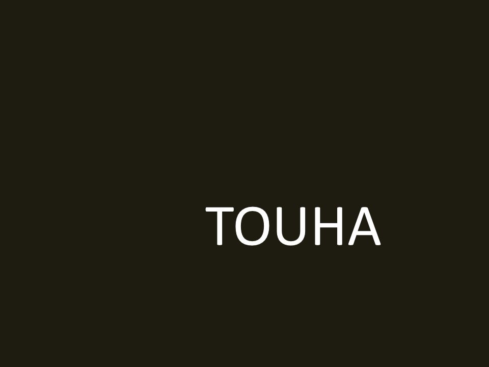TOUHA