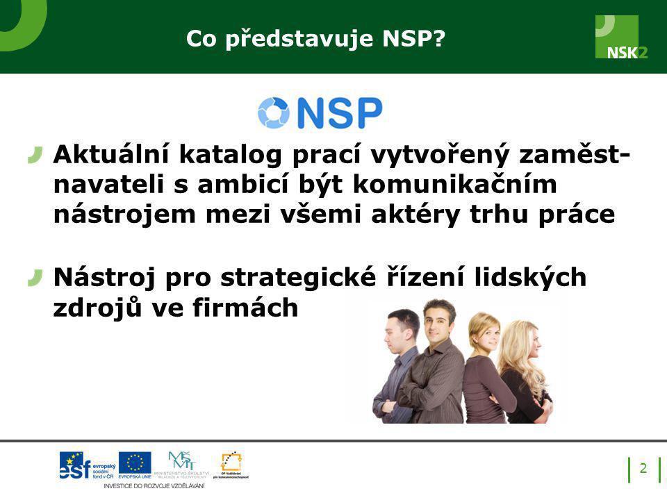 Co představuje NSP.