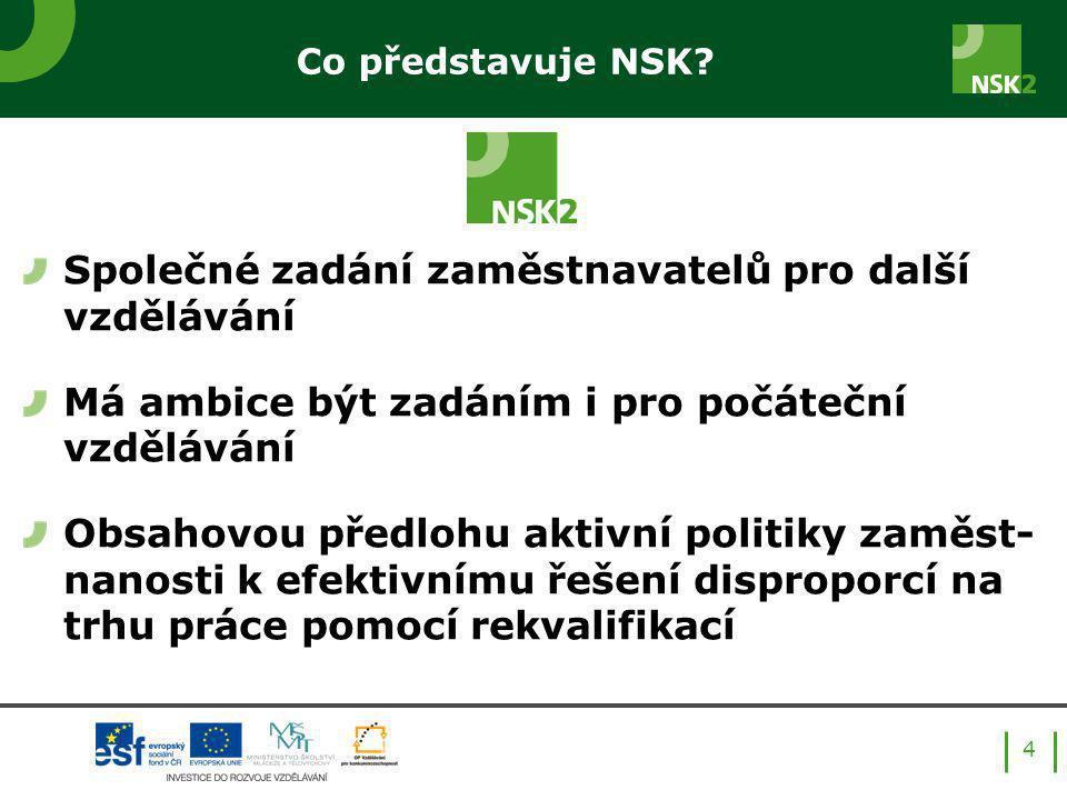 Co představuje NSK.