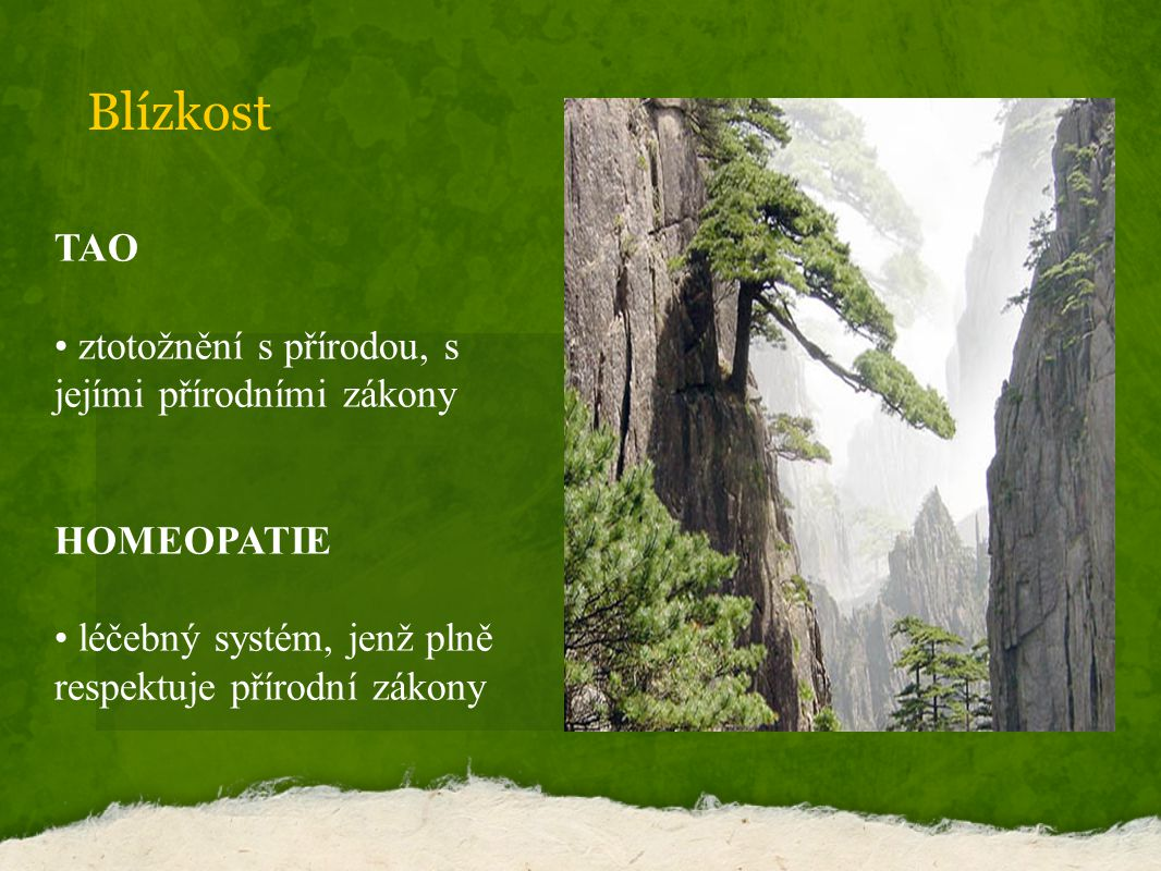 Blízkost TAO ztotožnění s přírodou, s jejími přírodními zákony HOMEOPATIE léčebný systém, jenž plně respektuje přírodní zákony