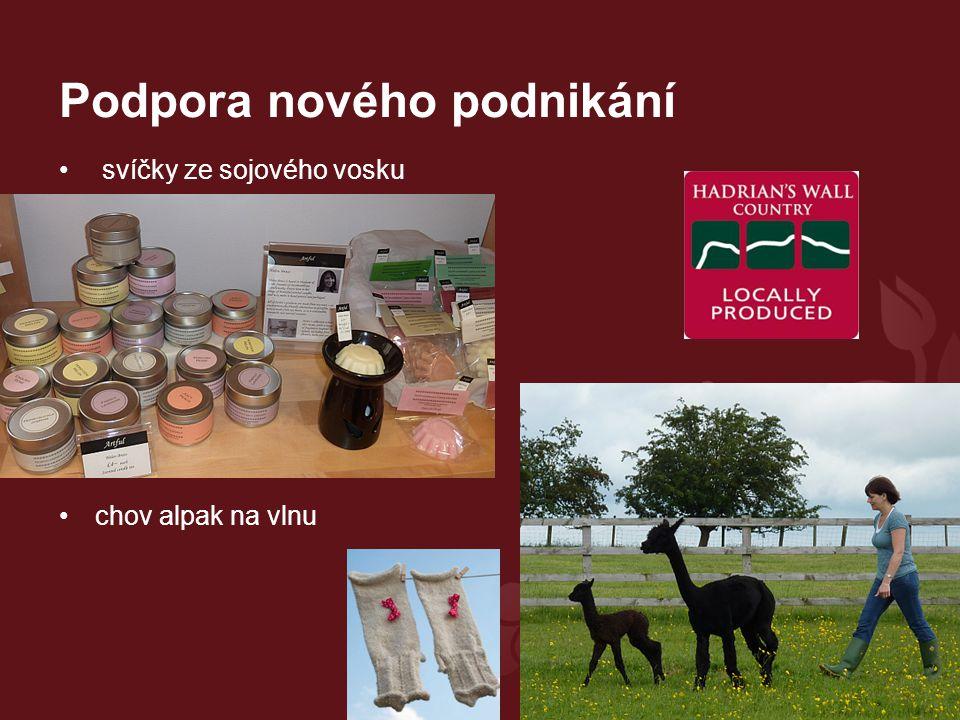 Podpora nového podnikání svíčky ze sojového vosku chov alpak na vlnu