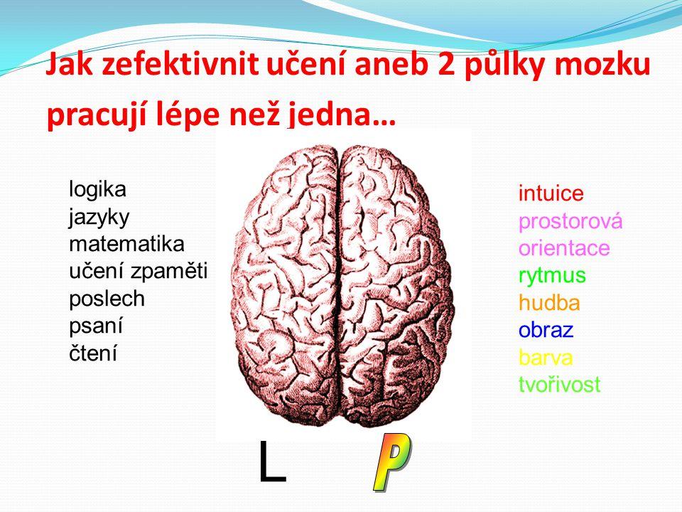 Jak zefektivnit učení aneb 2 půlky mozku pracují lépe než jedna… logika jazyky matematika učení zpaměti poslech psaní čtení intuice prostorová orienta