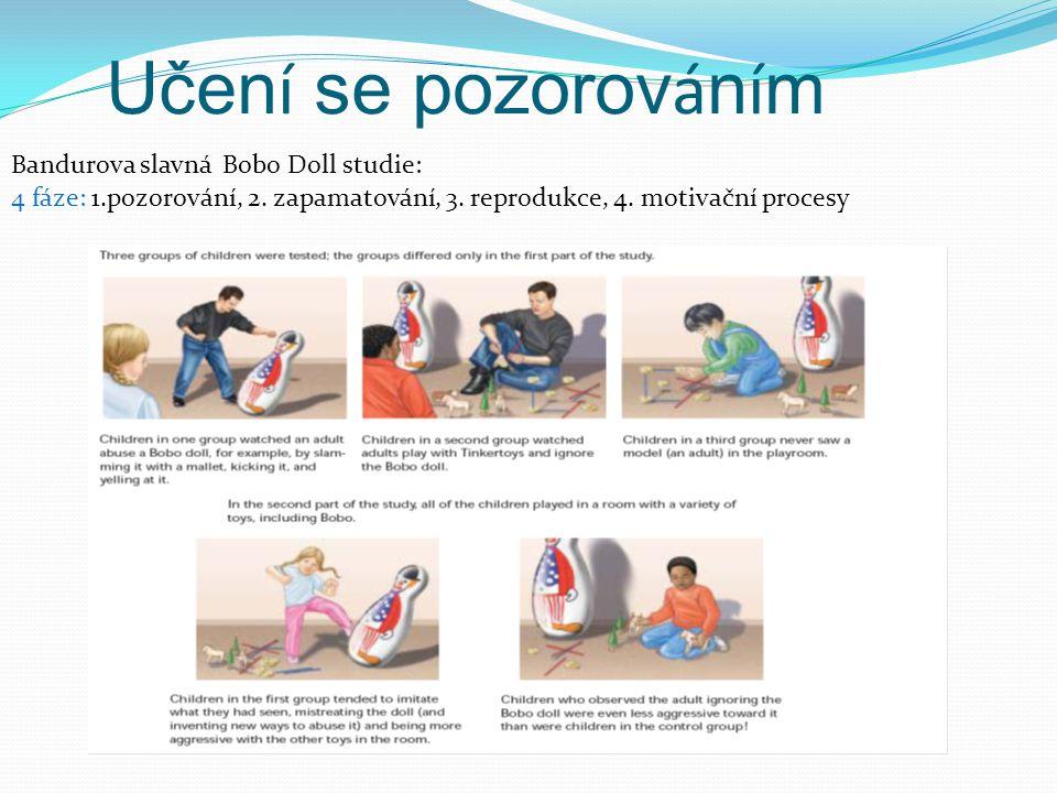 Učen í se pozorov á n í m Bandurova slavná Bobo Doll studie: 4 fáze: 1.pozorování, 2. zapamatování, 3. reprodukce, 4. motivační procesy