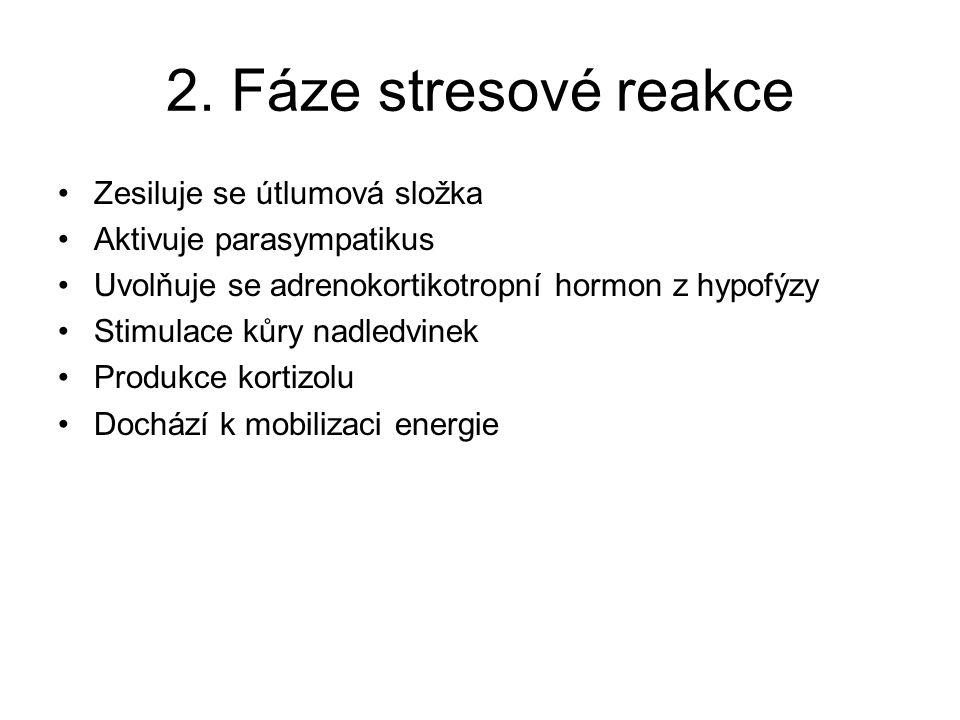 2. Fáze stresové reakce Zesiluje se útlumová složka Aktivuje parasympatikus Uvolňuje se adrenokortikotropní hormon z hypofýzy Stimulace kůry nadledvin