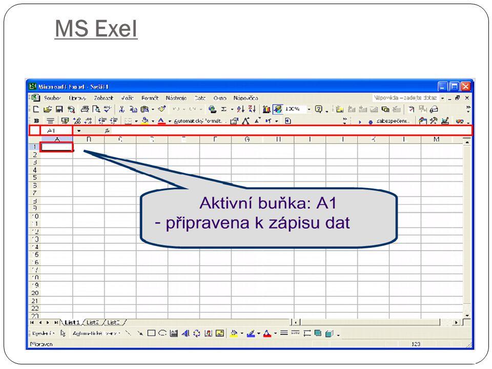 MS Exel
