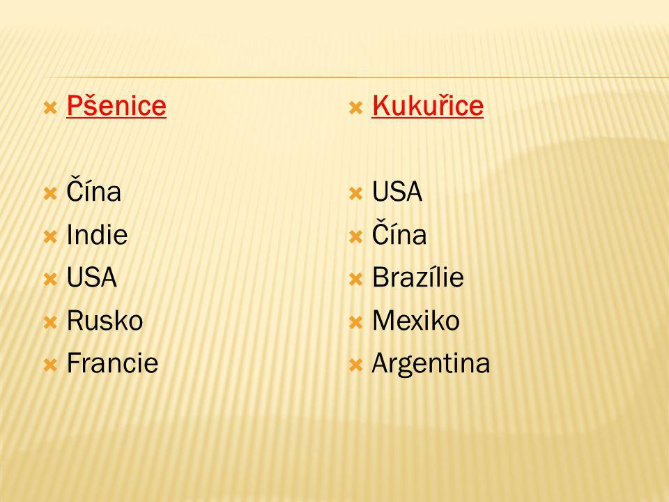  Pšenice  Čína  Indie  USA  Rusko  Francie  Kukuřice  USA  Čína  Brazílie  Mexiko  Argentina