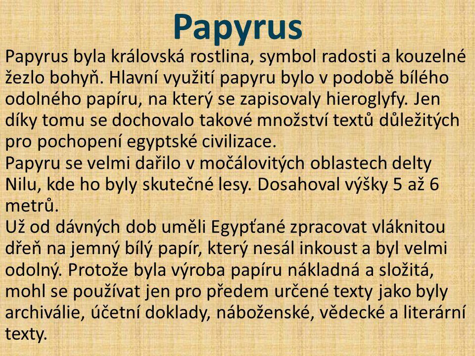 Papyrus Papyrus byla královská rostlina, symbol radosti a kouzelné žezlo bohyň. Hlavní využití papyru bylo v podobě bílého odolného papíru, na který s